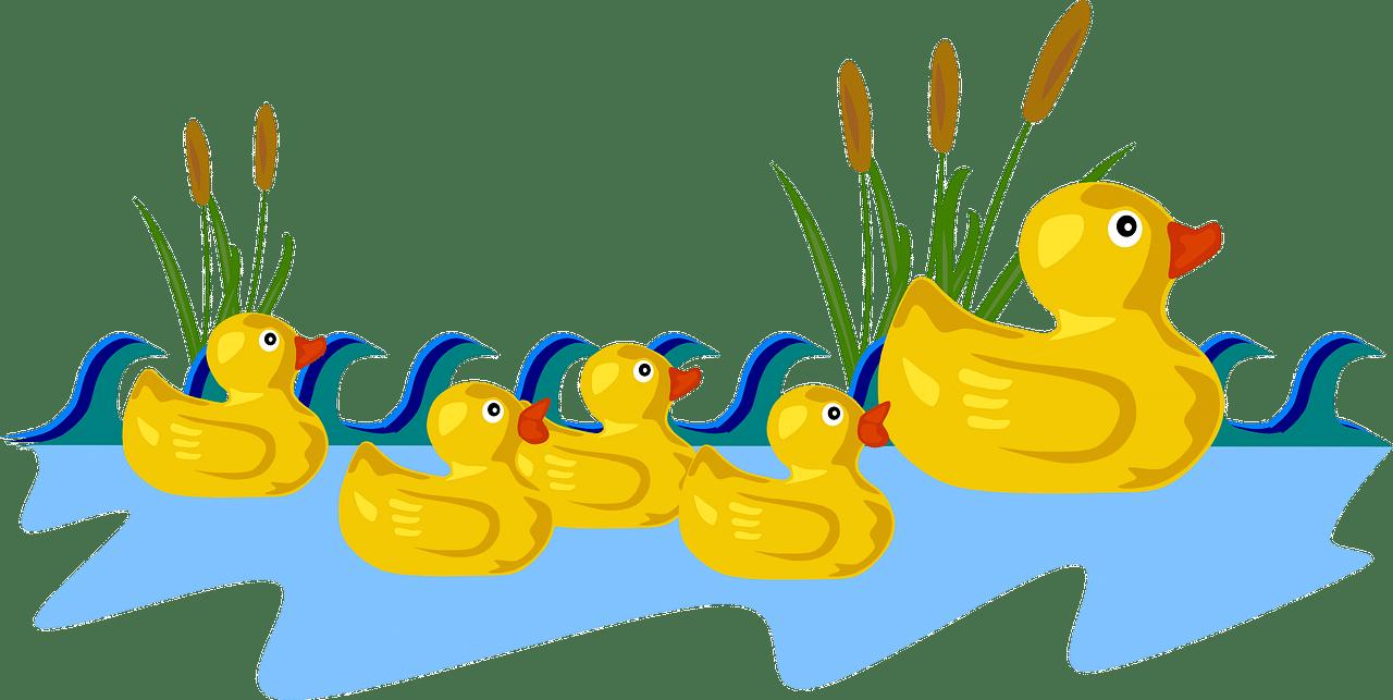 kayip-ordek-yavrusu-masali