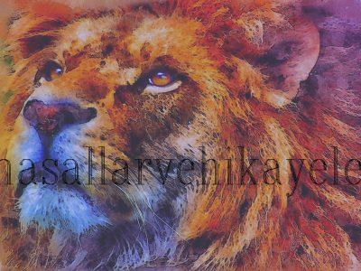 heybetli-aslan-masali